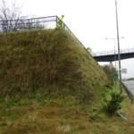 Kilpedder Footbridge, Wicklow | Shay Murtagh Precast